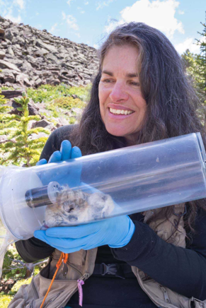 Chris Ray, pika scientist at the University of Colorado, Boulder