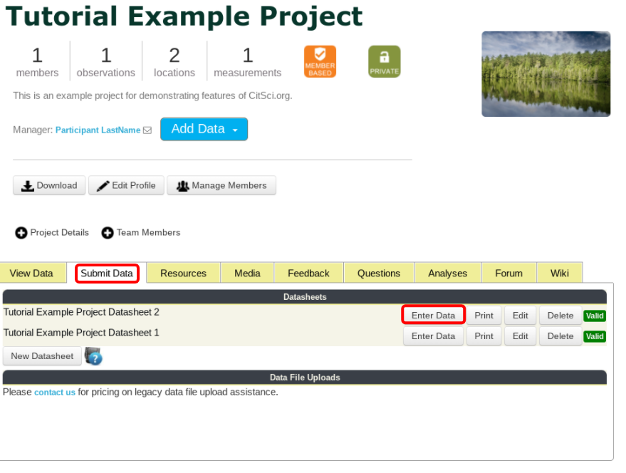 Submit Data Tab and Enter Data Tab Highlighted in an Example Project
